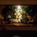 how to setup a snake viv