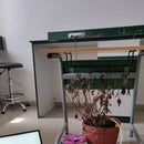 The Lazy Grower (Self Irrigating Plant)