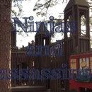 Ninjas and Assasins
