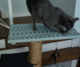 Custom Cat Scratcher W/ Removable Covers