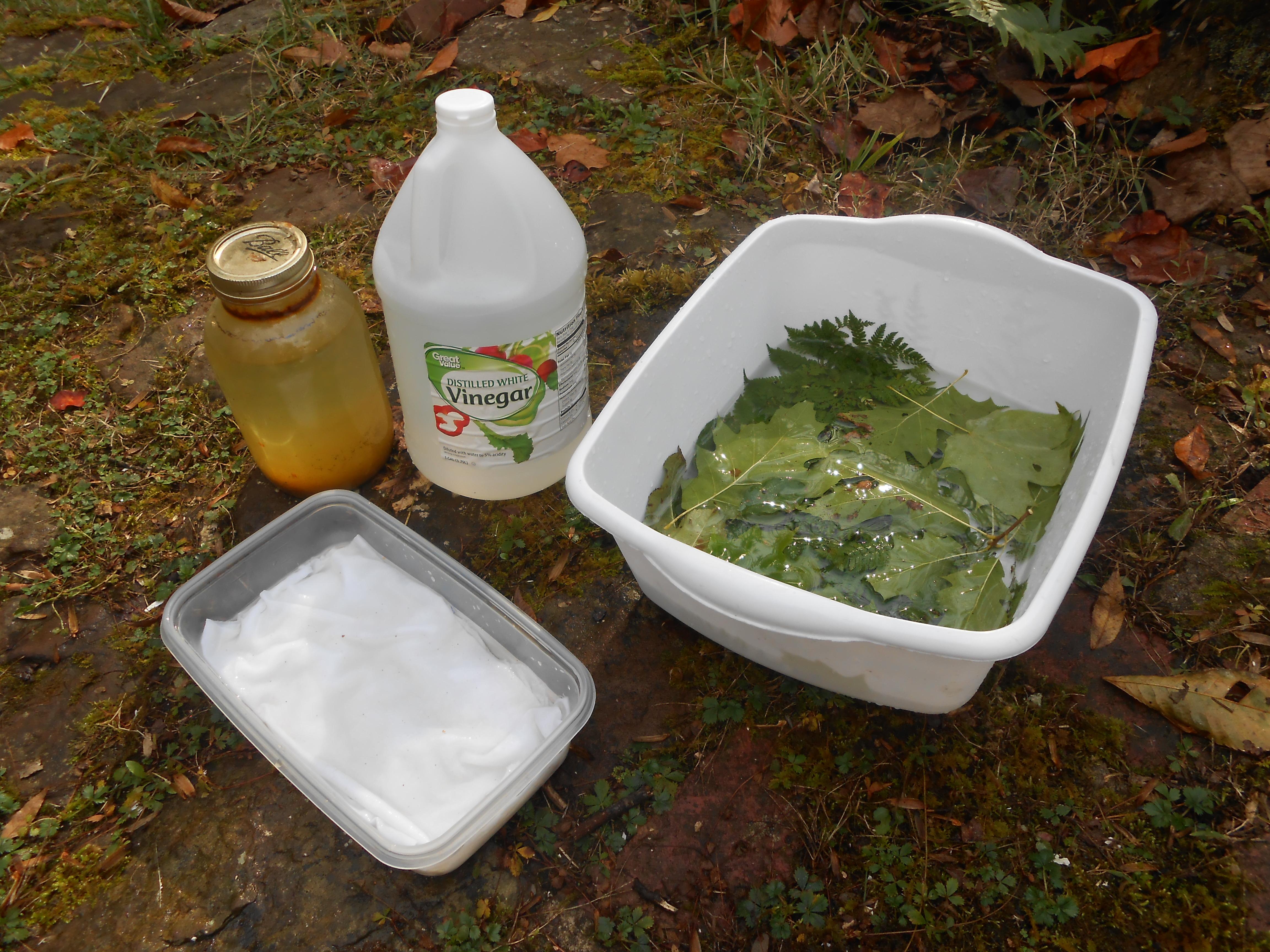 Picture of Gather & Pre-soak All Materials