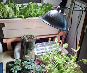 Indoor Aquaponic Food Production System