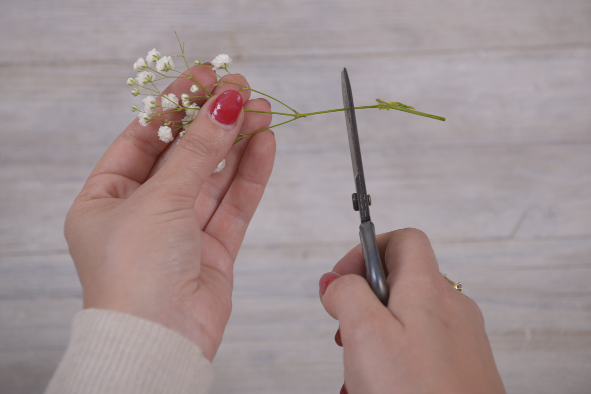 Picture of Pick Your Flowers and Cut the Stems