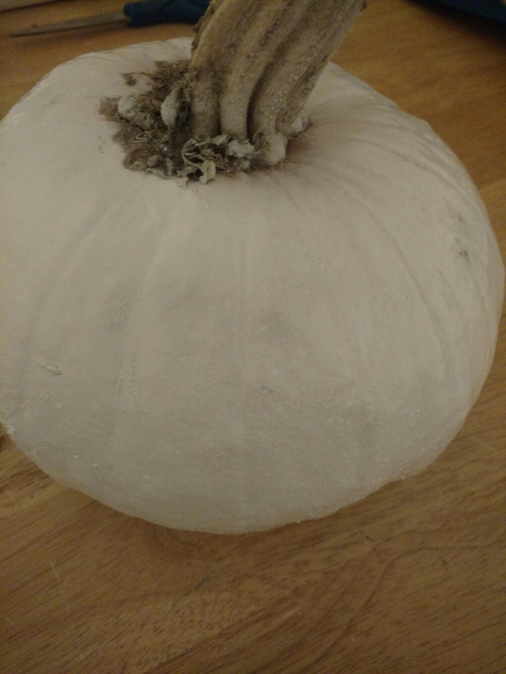 Picture of Step 2: Paint the Pumpkin White.
