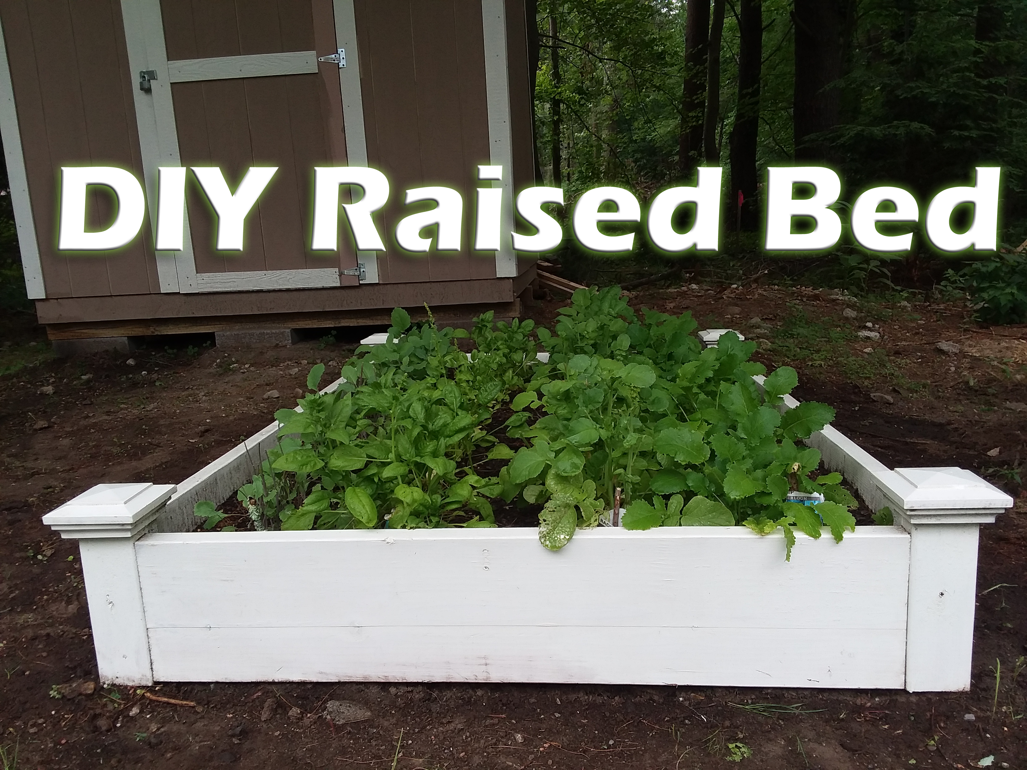 Picture of Easy DIY Raised Garden Beds