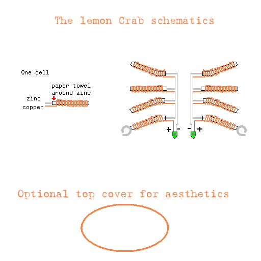 Picture of The Lemon Crab