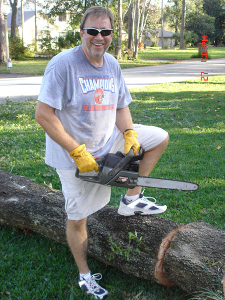 Picture of How to Cut Down a Tree