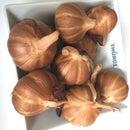 Hot Smoked Garlic puree