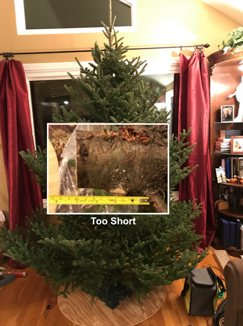Picture of Christmas Tree Emergency