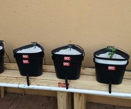 Dutch Bucket Hydroponics