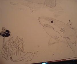 shark drawing