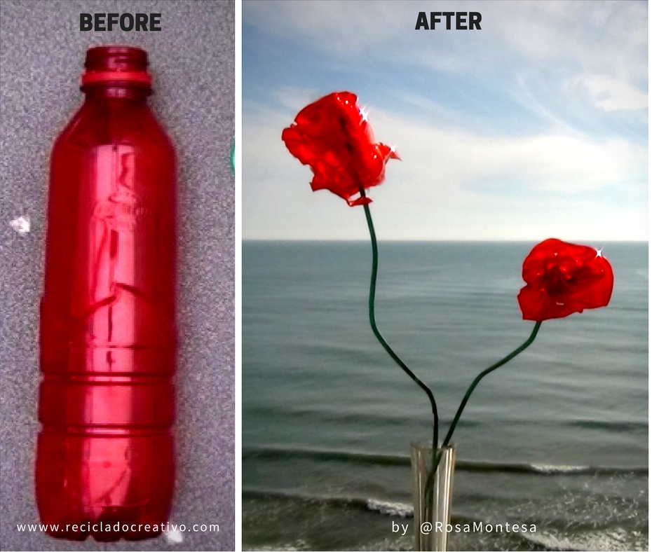 Picture of Before and After of the Plastic Bottle