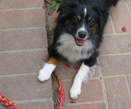 Make a Rope Dog Toy