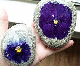 Pressed Flower Rocks