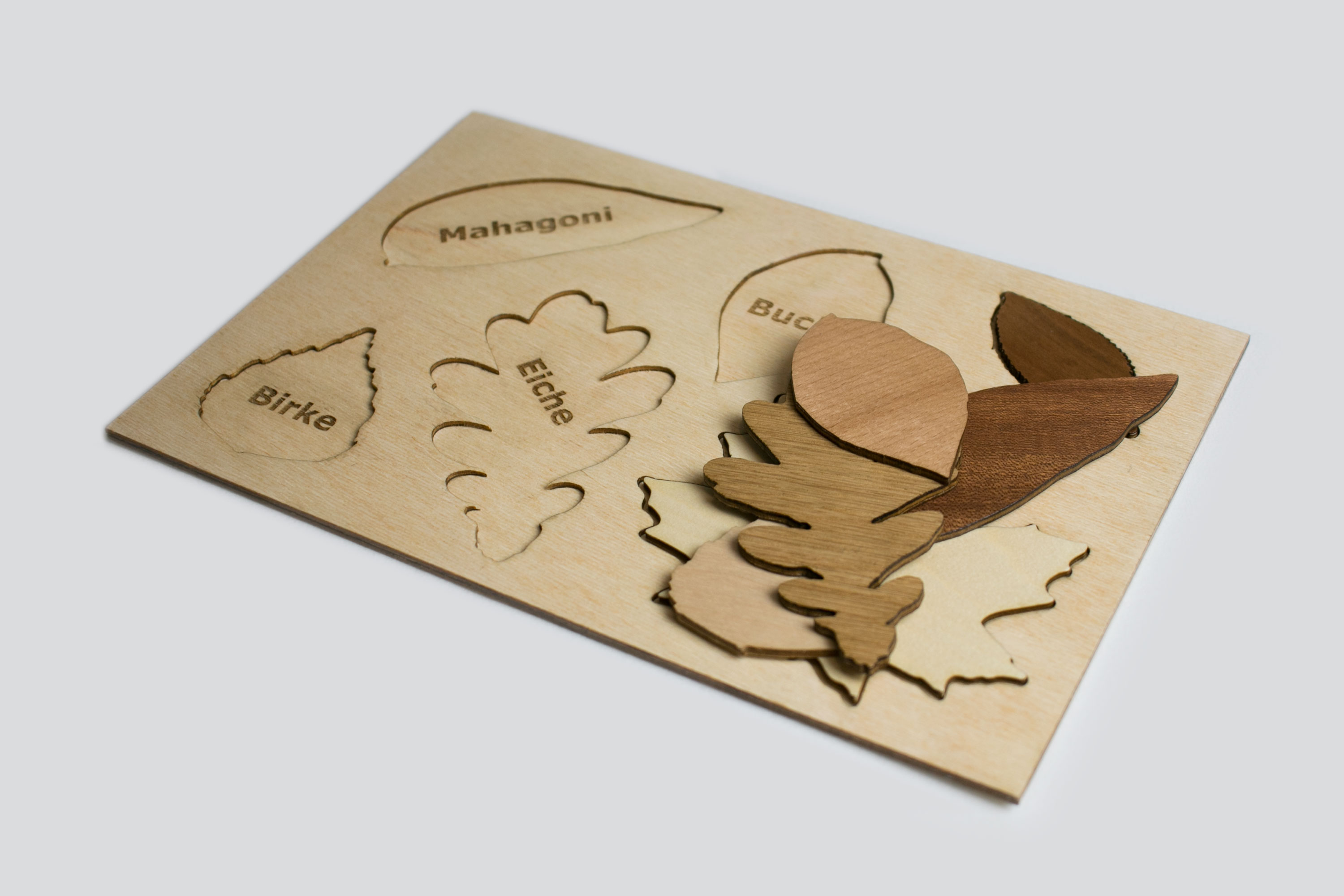 Picture of Leaf Puzzle