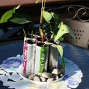 Recyclable Planter