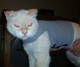 cat thunder shirt