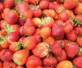Strawberries (Photo Contest Red Week)