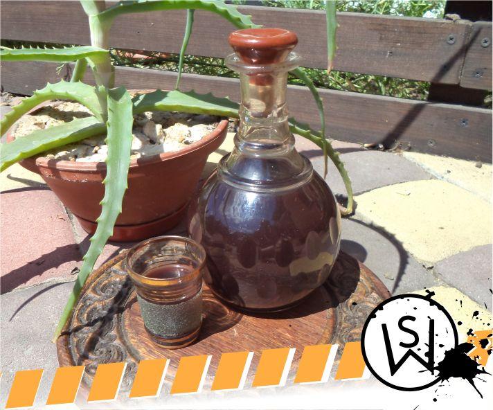 Picture of Aloe Based Tonicizing Tincture
