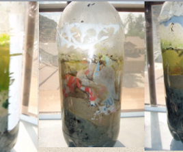 How to Isolate Plastic Degrading Bacteria From Soil!