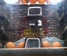 Cooler Incubator