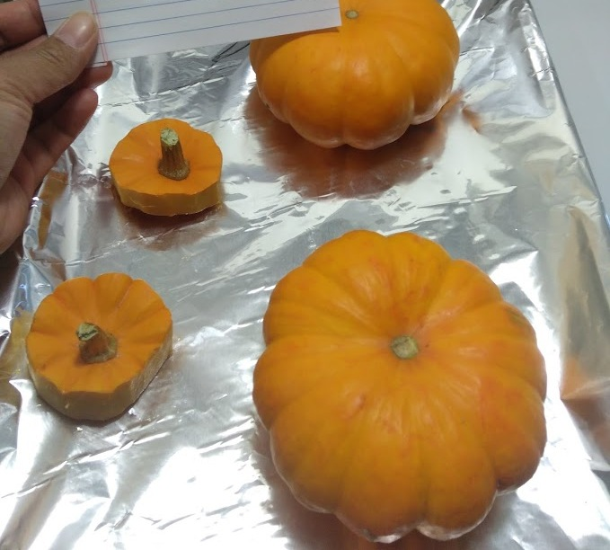 Picture of Preparing the Pumpkin Bowl
