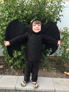 Easy Toothless Costume