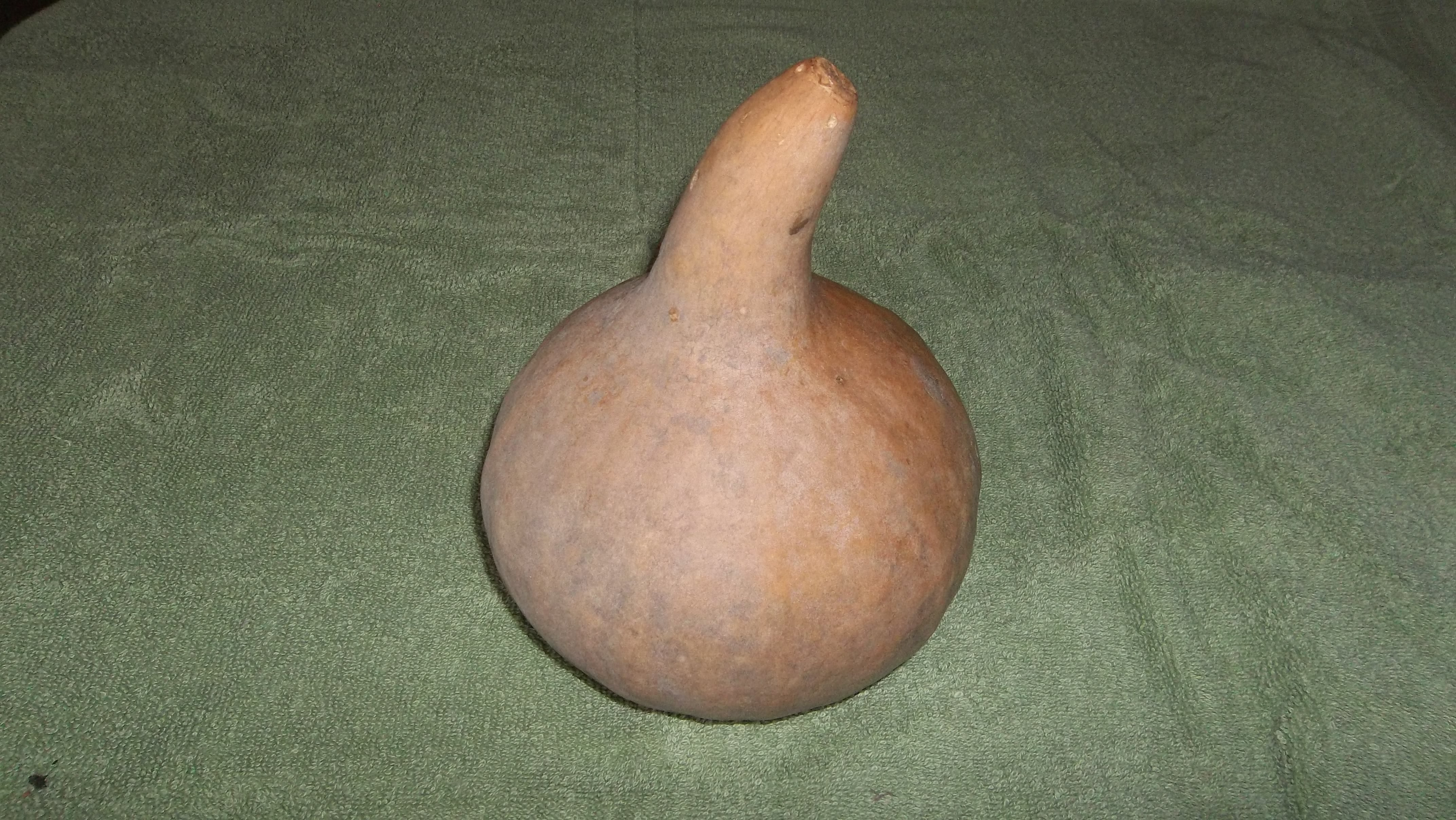 Picture of Step One: Gourd Selection and Preparation