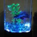 Fish Tank LED Bonanza!