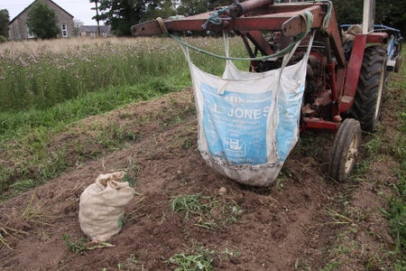 Harvesting and Storage