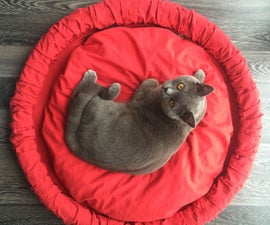 Upcycled Bike Tire Pet Bed