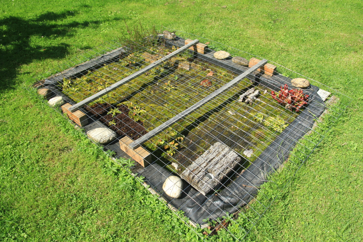 Picture of Peat Maintenance