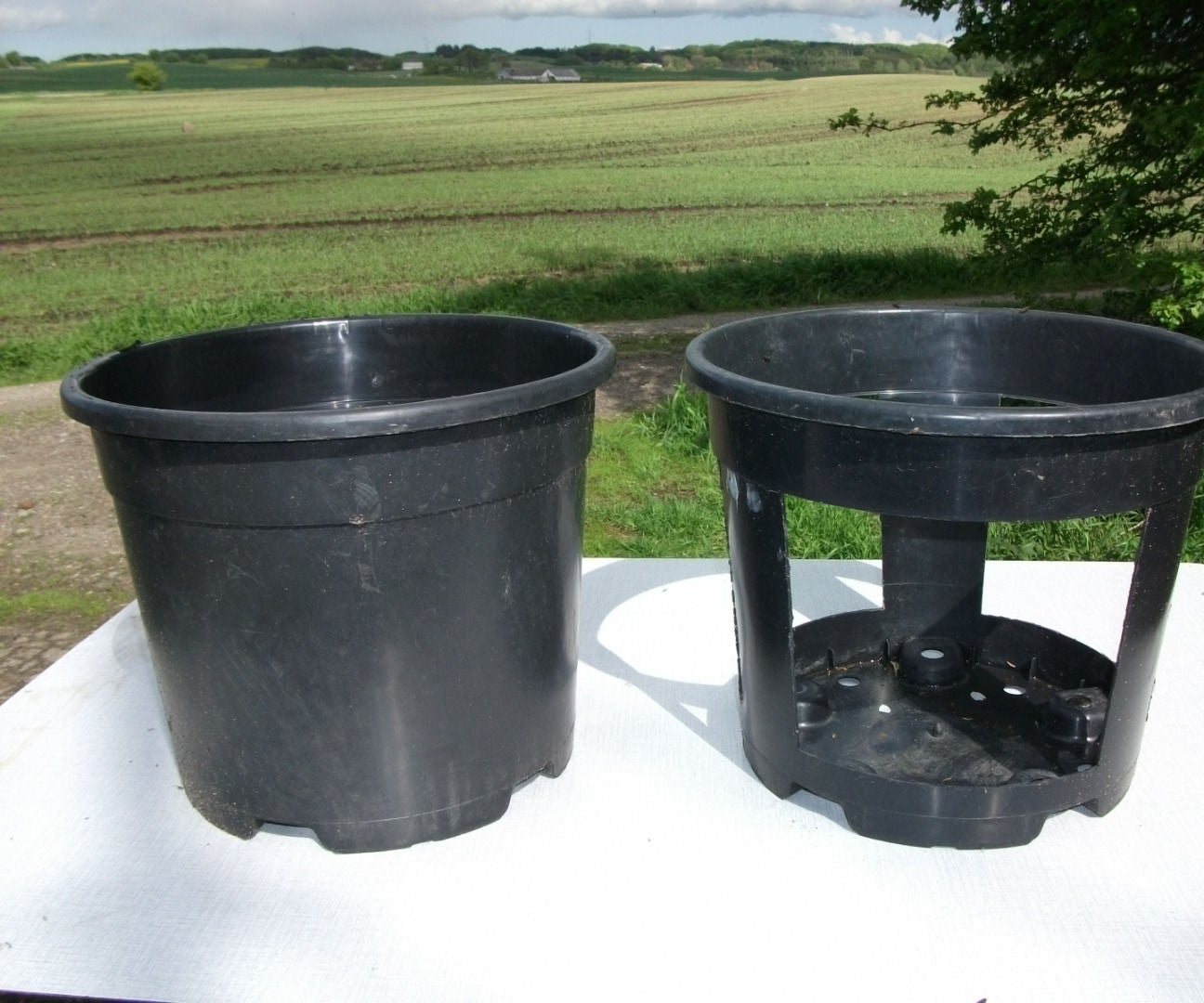 Growing Potatoes In Buckets 4 Steps With Pictures Instructables