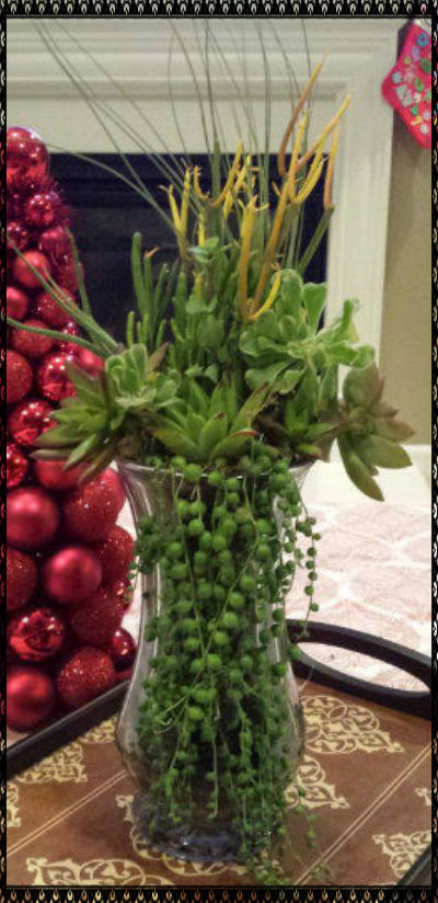 Picture of Living Bouquet-Grow Plants in Vase