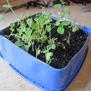 Ice Cream Tub Seedling Tray