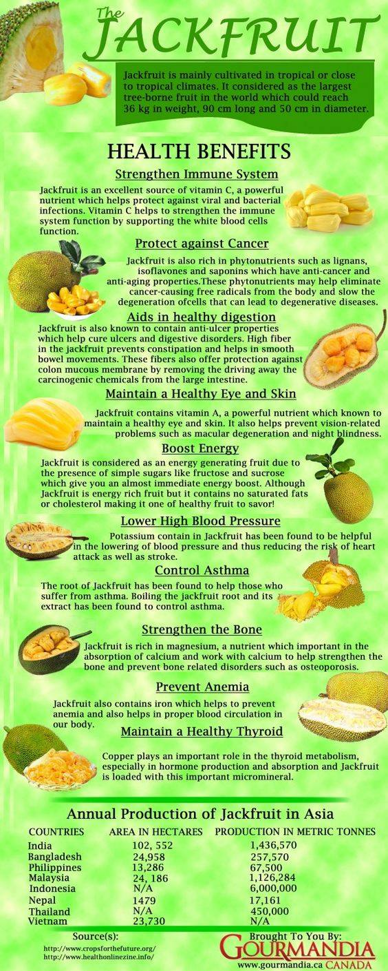 Picture of What Is a Jackfruit