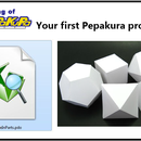 Your first Pepakura project