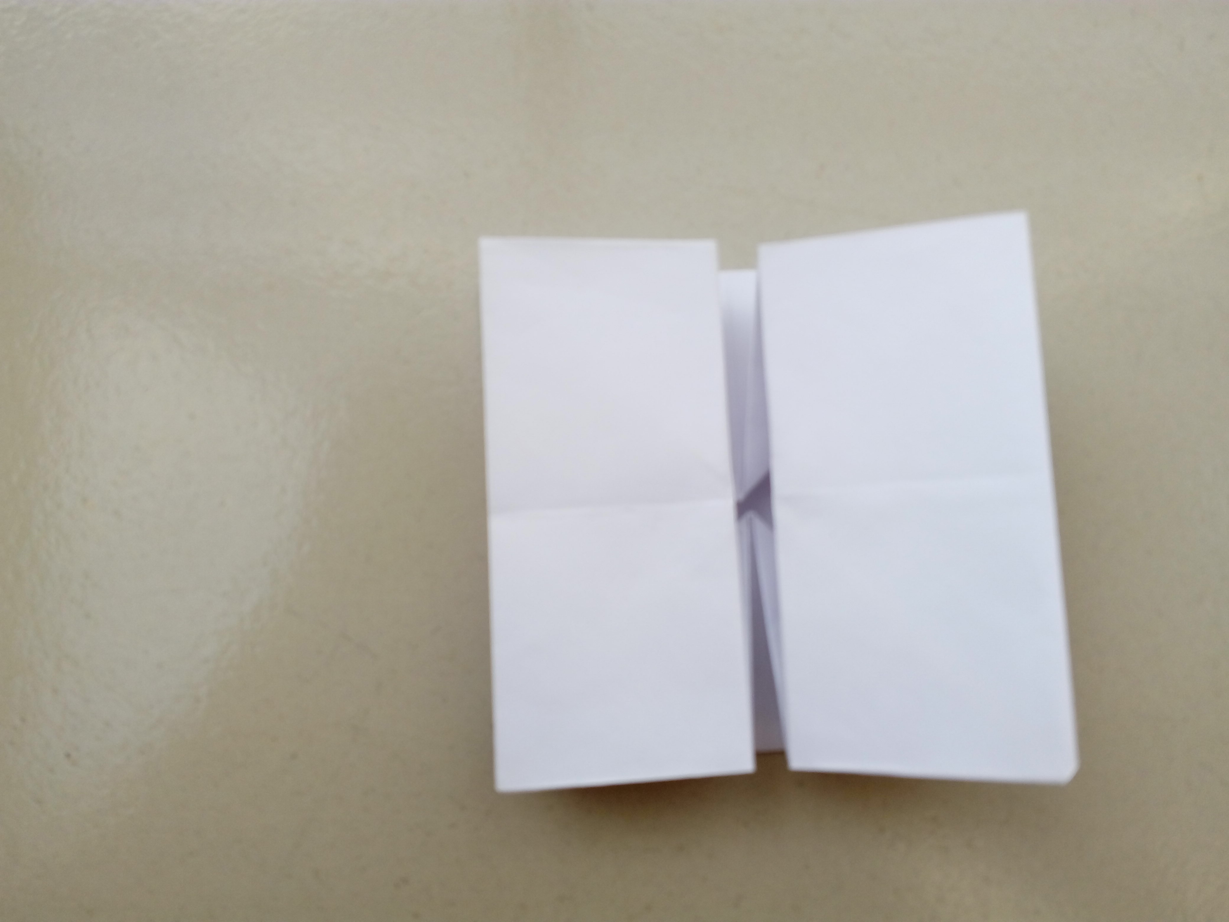 Picture of Now Make a Vertical Fold, Fold Half of the Top Layer Over to the Right.