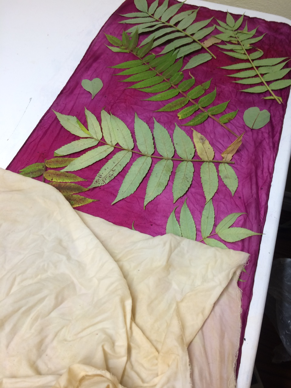 Picture of Adding a Mordant