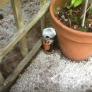 Cider Can Wasp Trap!