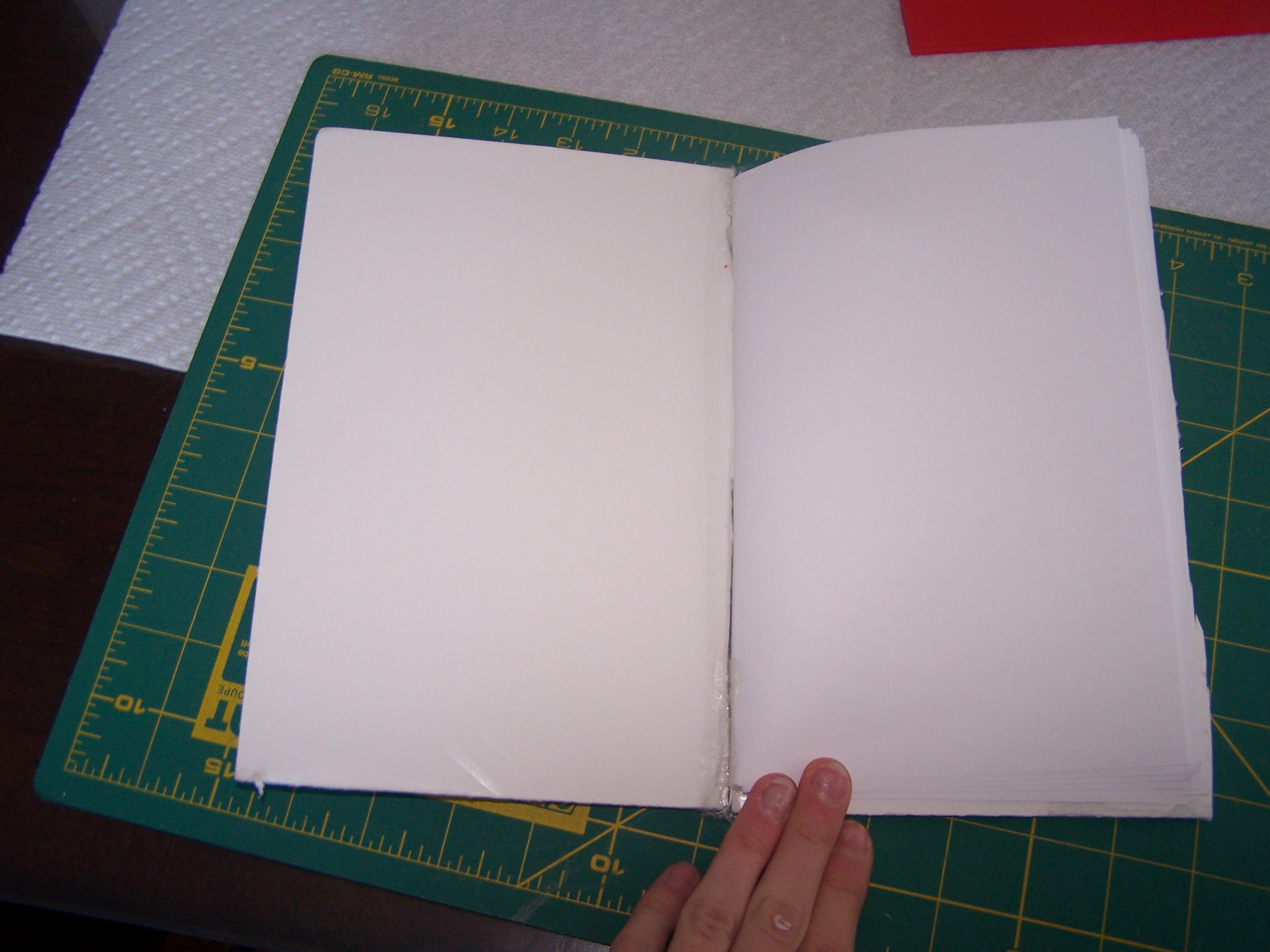 Picture of Pages of the Book