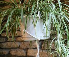 Easy DIY Plant Hanger