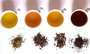 Picture of Selecting Your Tea