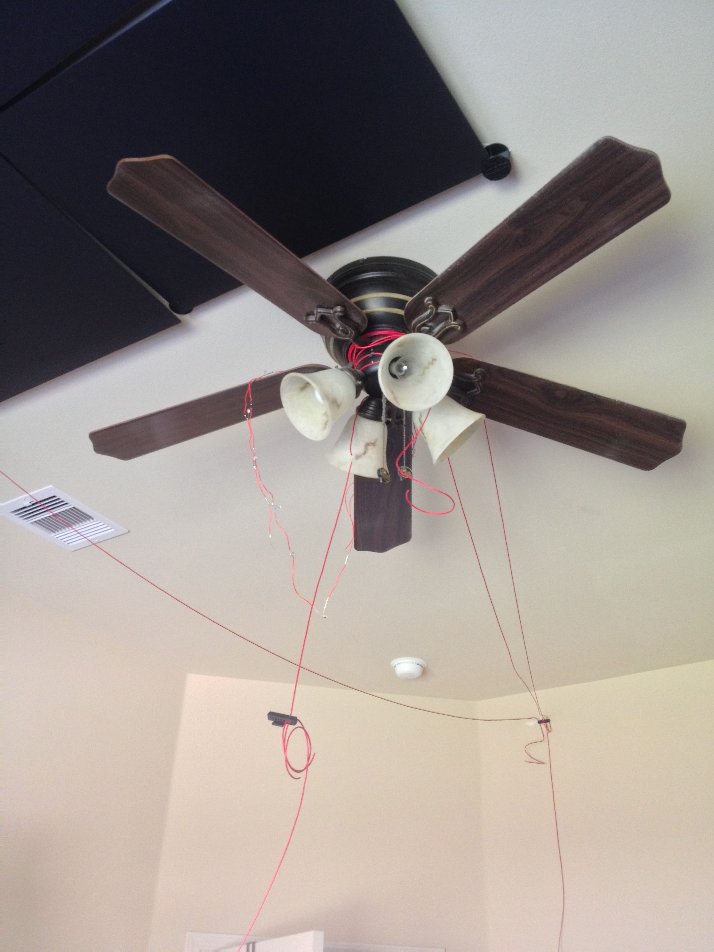 Picture of The Fan.....