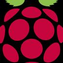 Make a Raspberry Pi Console