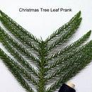 Christmas Tree Leaf Prank