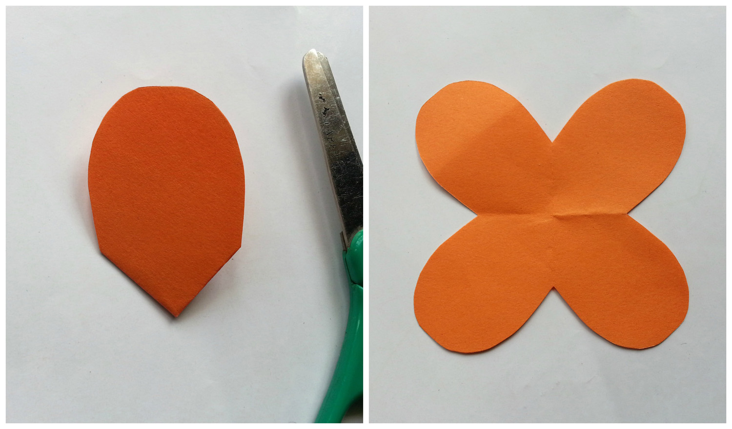 Picture of 4 Petals