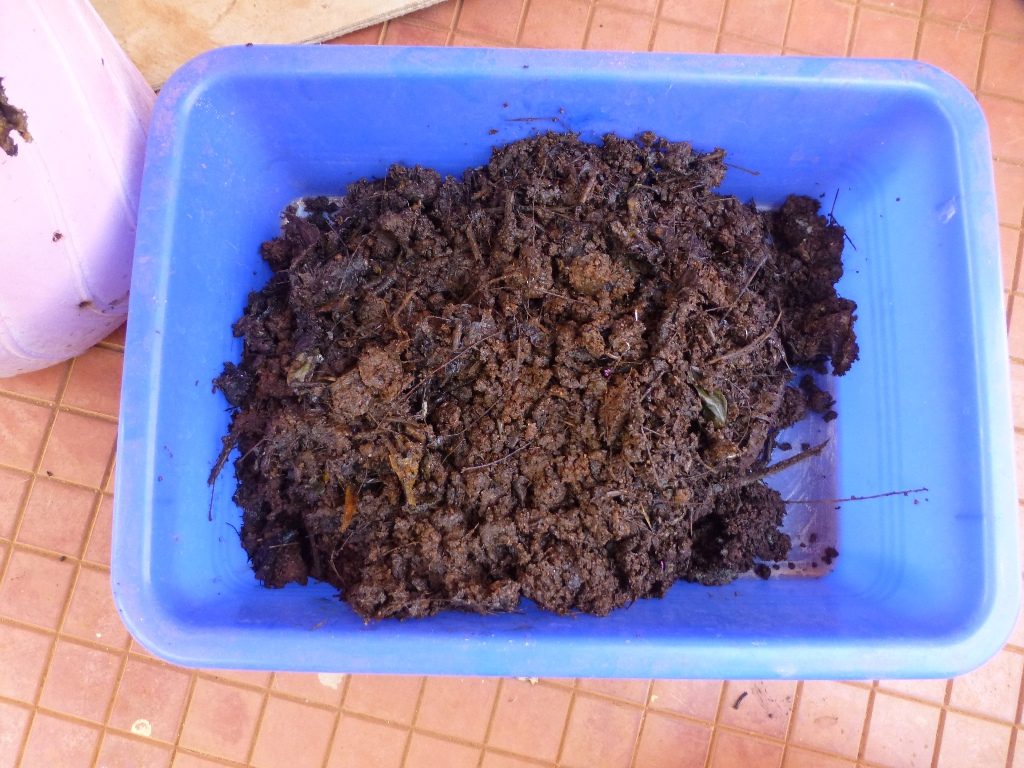 Picture of Harvest the Vermicompost