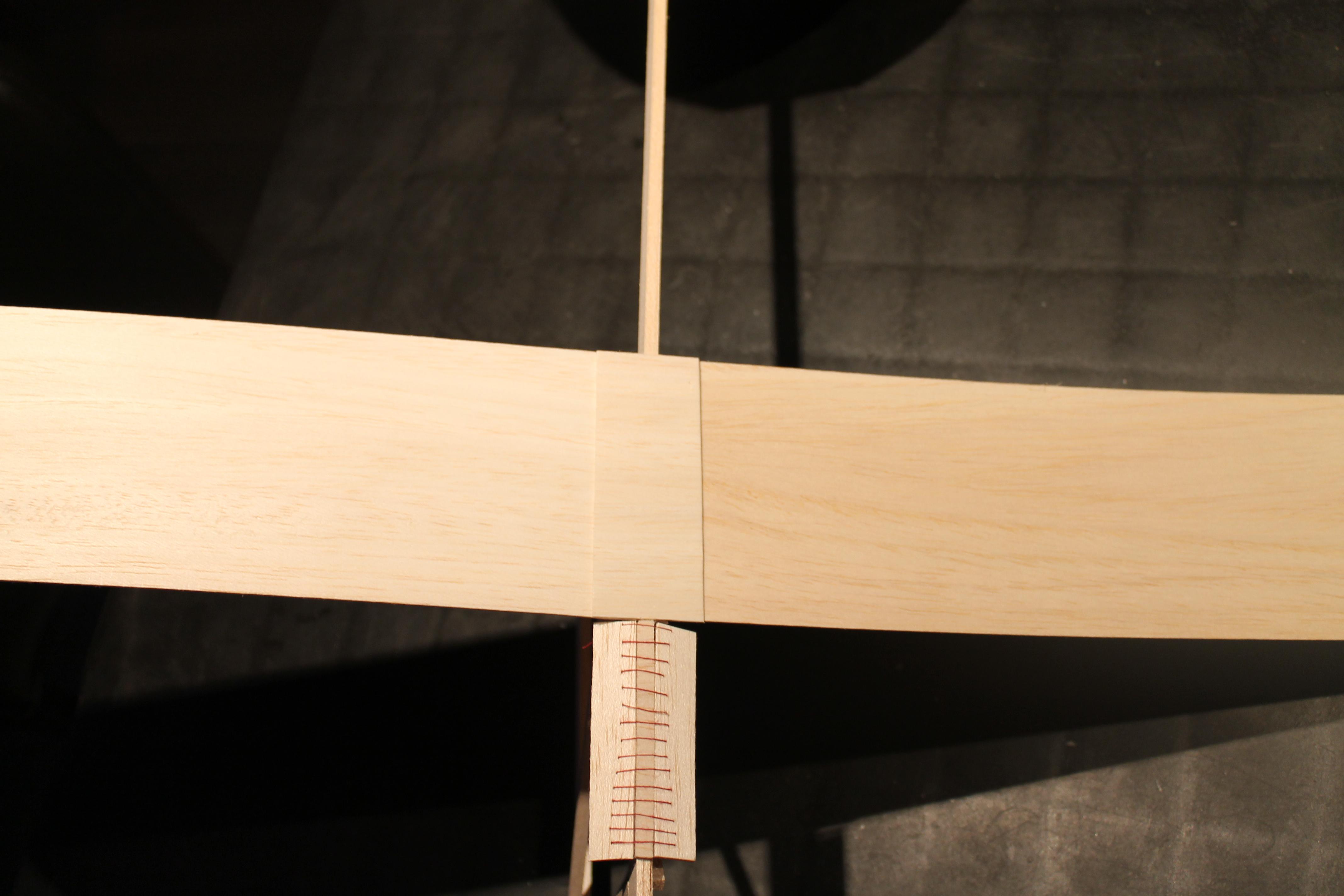 Picture of Bewegende (korte) Vleugels