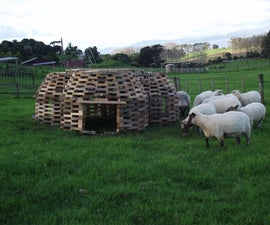Sheephive - an Unconventional Sheep Shelter